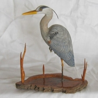 Blue Heron wood carving by artist Bill Windsor on Wood Carvings by Bill.